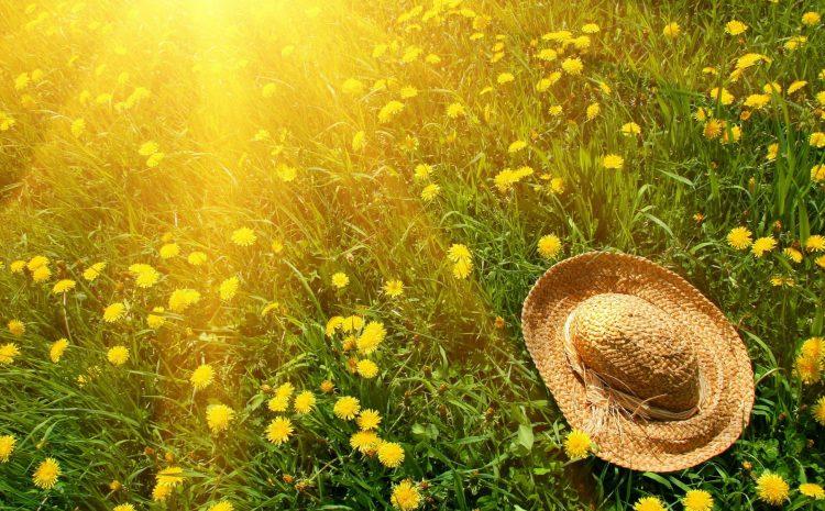 Yaz aylarında cilt kanseri riski artış gösteriyor
