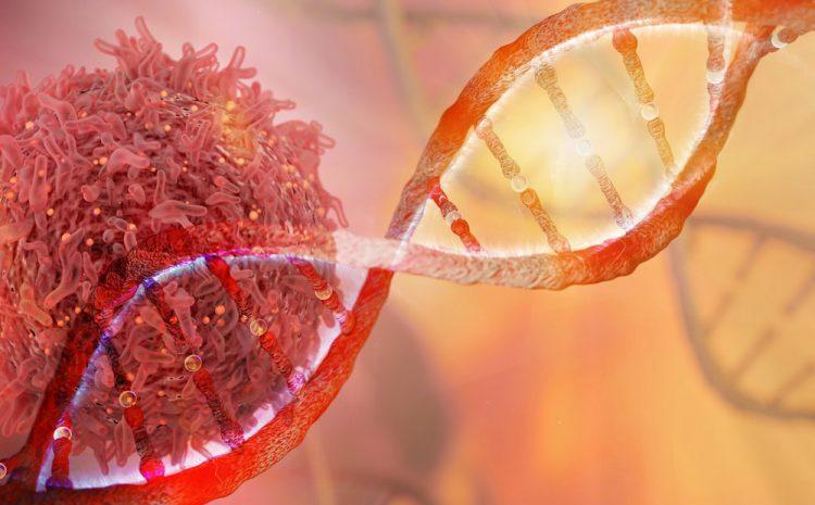 Kanserde genetik haritalama